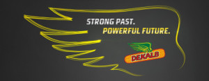 dekalb-banner